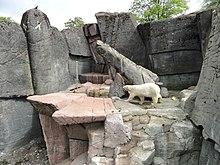 ulve wiki stor pik lille fisse