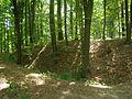 Polní opevnění - Švédský val, archeologické stopy (Mšeno).JPG