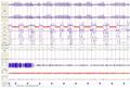 Polysomnographie-apnees-5min2.png