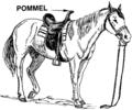 Pommel (PSF).png