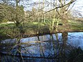 Pond near Little Malvern Court - geograph.org.uk - 754135.jpg