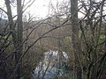 Pond near Sasel Wood - geograph.org.uk - 1180850.jpg