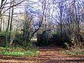 Pontarmé (60), passage supérieur de la ligne inachevée Aulnay - Verberie, parcelles 208, 206, 235, 236 (2).jpg