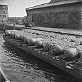 Ponton met Duitse zeemijnen, Bestanddeelnr 900-2992.jpg