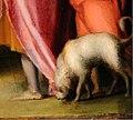 Pontormo, giuseppe venduto a putifarre, 1515 ca., dalla camera nuziale borgherini 10 cane.jpg