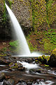 Ponytail Falls (5435282402).jpg