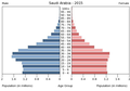 Population pyramid of Saudi Arabia 2015.png