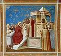 Presentation of the Virgin - Capella dei Scrovegni.jpg