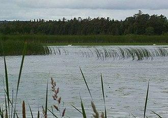 Presqu'ile Provincial Park - Presqu'ile Marsh