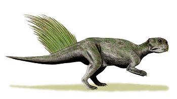 Psittacosaurus mongoliensis whole BW.jpg