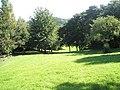 Public open space behind Bridgnorth Scout Hut - geograph.org.uk - 1452956.jpg