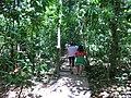 Puerto Princesa, Palawan, Philippines - panoramio (22).jpg