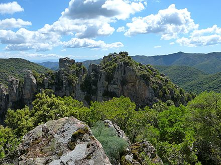 Sulcis Regional Park, the European largest Mediterranean evergreen forest Punta Sebera.JPG