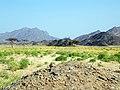 Qesm Marsa Alam, Red Sea Governorate, Egypt - panoramio (11).jpg