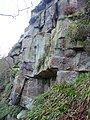 Quarry face, Hathershelf Scout Wood. Myholmroyd - geograph.org.uk - 1200060.jpg