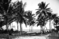 Queensland State Archives 1301 Mossman Beach NQ c 1935.png