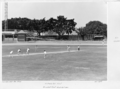 Queensland State Archives 6258 New South Wales visit Cricket Test Exhibition October 1958.png