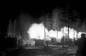 RIAN archive 601168 Leningrad offensive operation.jpg
