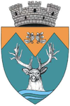 Coat of arms of Novaci
