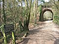 Railway arch, Upton Heath - geograph.org.uk - 1233618.jpg
