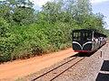 Rainforest Ecological Train.jpg