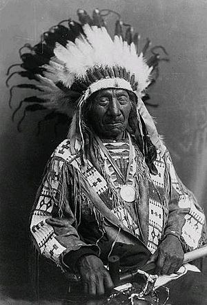 Chief Red Cloud, half-length portrait, seated,...