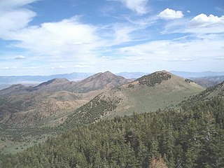 Red Mountain Wilderness in the Humboldt-Toiyabe National Forest