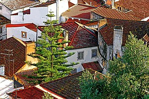 Torres Vedras - The red tiled-roofs of the town in Santa Maria do Castelo e São Miguel parish