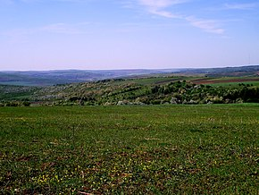 Rezina District, Moldova - panoramio (36).jpg