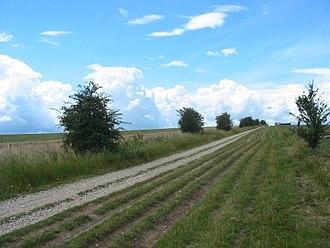 The Ridgeway - The Ridgeway passing through open downland