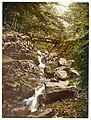 Riefenbachsfall, Harzburg, Hartz, Germany-LCCN2002713808.jpg