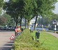 Rijswijk Groenvoorziening 003.jpg