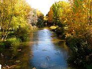 Rio Arlanzon in Fall