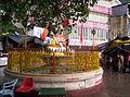 Rishikesh haridRishikeshwar (140).JPG