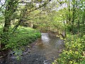 River-Afon Honddu, Pandy - geograph.org.uk - 168053.jpg