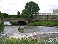 River Irwell - geograph.org.uk - 485743.jpg