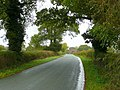 Road between King's Green and Camer's Green - geograph.org.uk - 1019283.jpg