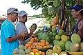 Roadside Fruit Stand, Zapata, Cuba.jpg