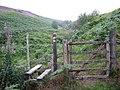 Robber's Cleugh - geograph.org.uk - 220982.jpg
