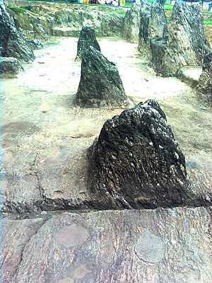 Akkana Madanna Caves - Image: Rocks at Akkanna Madanna Caves in Vijayawada