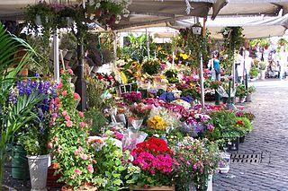 שוק הפרחים בקאמפו די פיורי - חגיגה של צבעים!