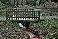 Rombergpark-100330-11345-Bruecke.jpg