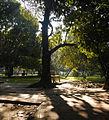 Romna Park5.JPG