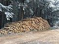 Ronno - Tas de bois à la croix des Fourches (déc 2018).jpg