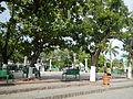 Rosario,Cavitejf3276 07.JPG