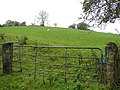Rousky Townland - geograph.org.uk - 1547968.jpg
