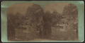 Rustic Bridge in the Ramble, from Robert N. Dennis collection of stereoscopic views.png