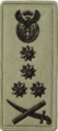 SANDF Rank Insignia General embossed badge right.png