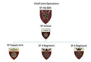 South African Special Forces - SANDF Special Forces Organigram