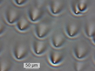 Waveguide (optics) - Optical waveguides formed in pure silica glass as a result of an accumulated self-focusing effect with 193 nm laser irradiation. Pictured using transmission microscopy with collimated illumination.